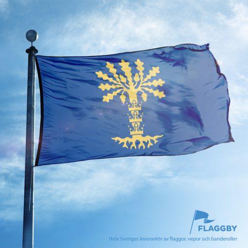 Blekinge flagga