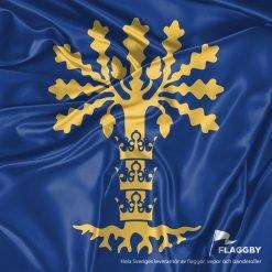 Flagga Blekinge