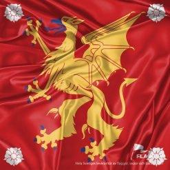 Flagga Östergötaland